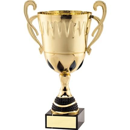 AMC75 SERIES CUP