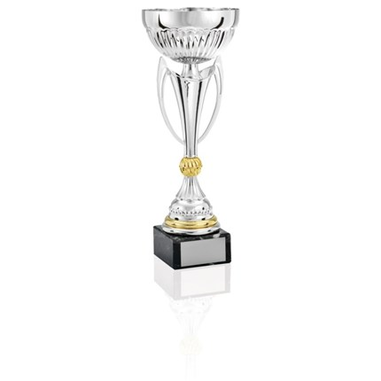 Ec-1411 Gold And Silver Series - Semi-Metal Cup