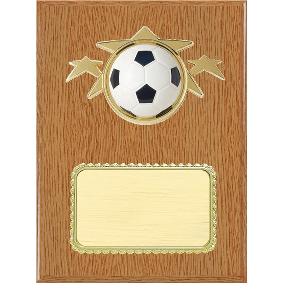 resin-plaque-series-soccer-wood