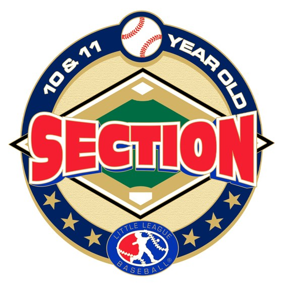 10-and-11-year-old-baseball-pin-series-section