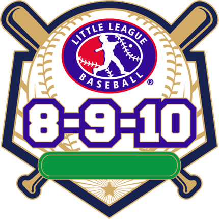 8-9-10 Year Old Baseball Pin Series