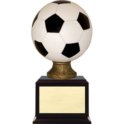 award-on-base-series-soccer-color