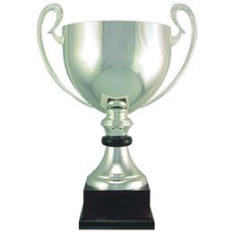 100-series-Italian-silver-cup