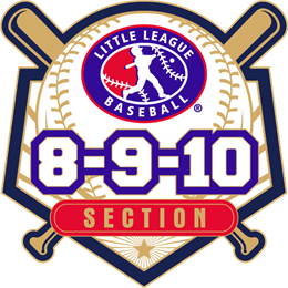 8-9-10-year-old-baseball-pin-series-section