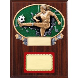 resin-plaque-series-soccer-f