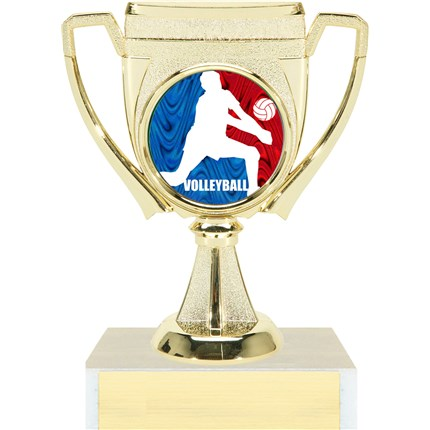 Victory Cup Insert Trophy Series - Volleyball