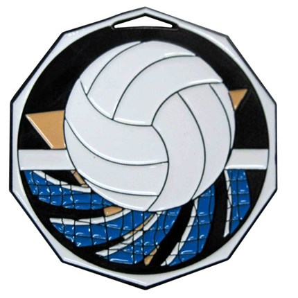 Decagon Colored Series - Volleyball
