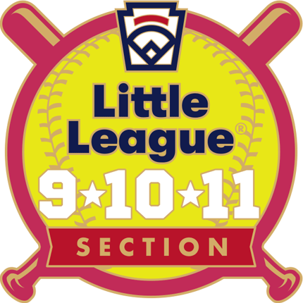 9-10-11 Year Old Softball Pin Series - Section - New Logo