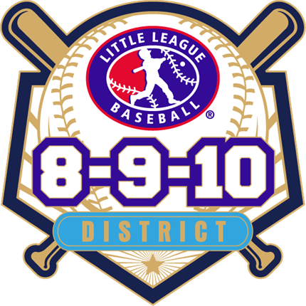 8-9-10 Year Old Baseball Pin Series - District