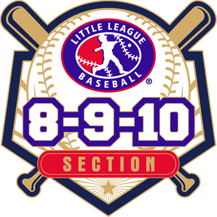 8-9-10 Year Old Baseball Pin Series - Section