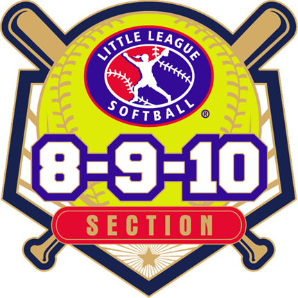 8-9-10 Year Old Softball Pin Series - Section