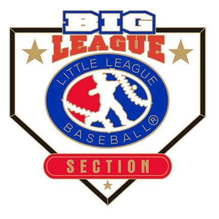 Big League Baseball Pin Series - Section