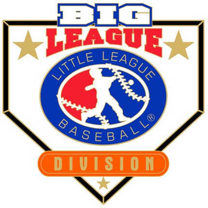 Big League Baseball Pin Series - Division