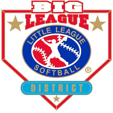Big League Softball Pin Series - District