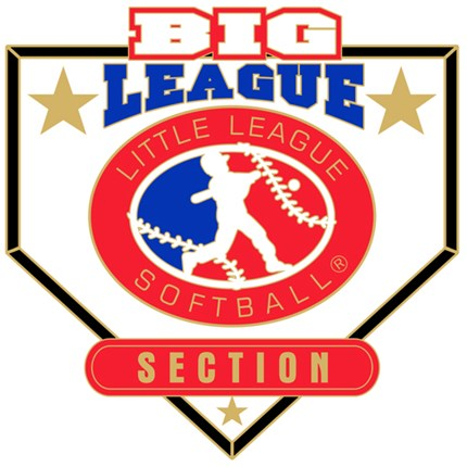 Big League Softball Pin Series - Section