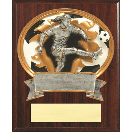 Resin Plaque Series - Soccer