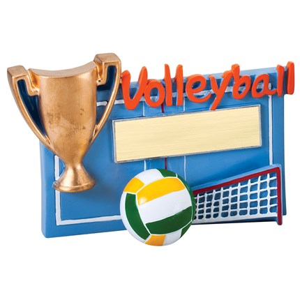 WINNERS CUP RESIN SERIES - VOLLEYBALL