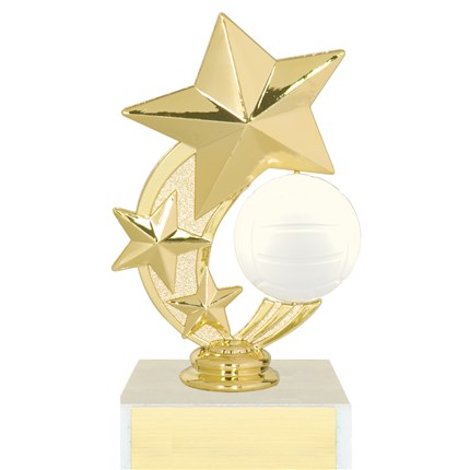 3 Star Spinner Trophy Series - Volleyball