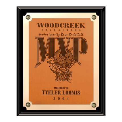 VL300 SERIES - SOLID BLACK FINISH PLAQUE