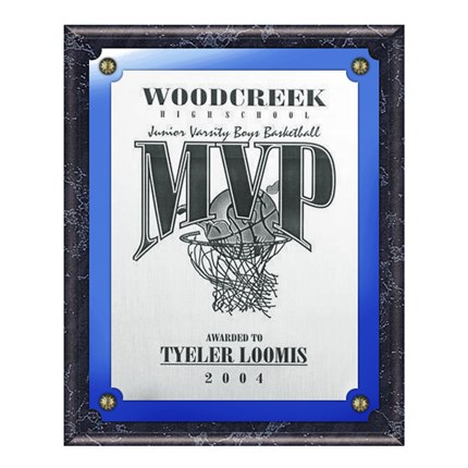 VL400 SERIES - BLACK MARBLE FINISH PLAQUE