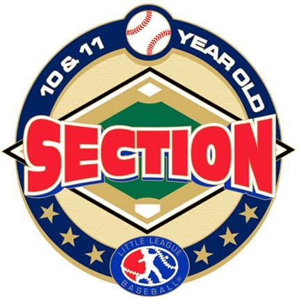10 & 11 Year Old Softball Pin Series - Section